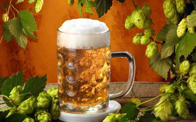 Beer wallpapers, Free picture, Big Cold beer
