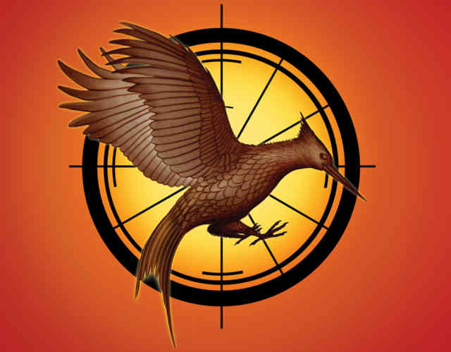 hunger-games-catching-fire - Hunger games - catching fire - #12
