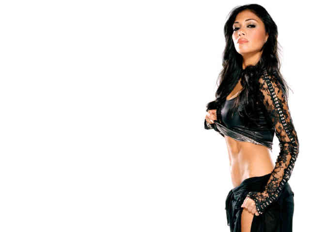 Nicole Scherzinger Hot Wallpaper  | Wallpaper, Wallpapers HD | printable | Hot celebrities | #21