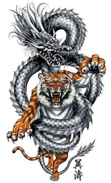dragon-tattoo-designs-blog-archive-wrapping-the-tiger-n-a-tattoodonkeycom