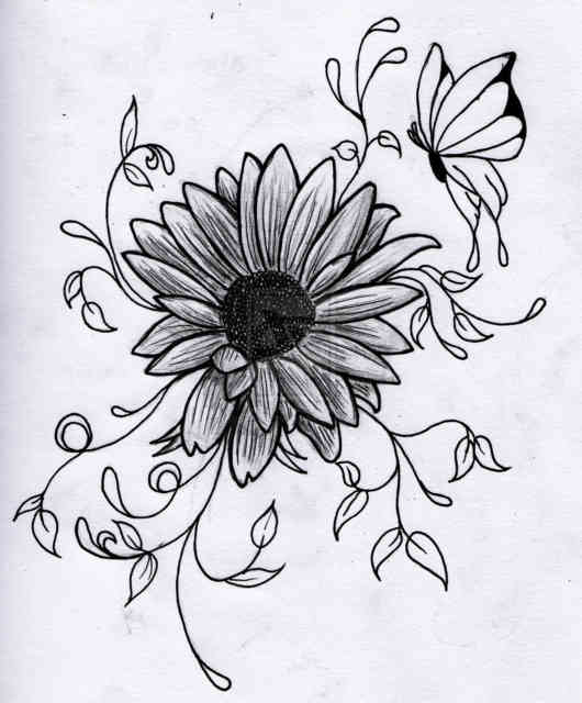 Flower Drawings | Flowers wallpapers | #5