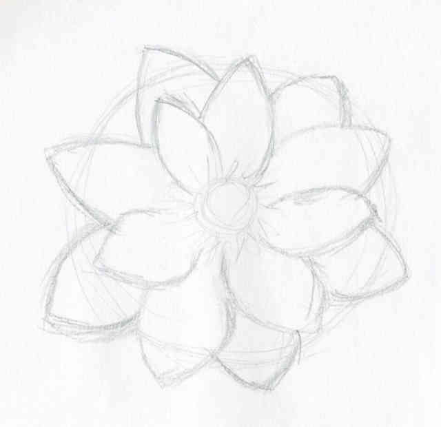 Flower Drawings | Flowers wallpapers | #7