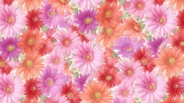 Flowers background | Flower wallpaper | images of flower | #18