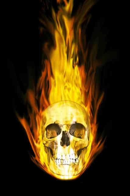 Skull Iphone Wallpaper Free HD Wallpapers Images Stock Photos