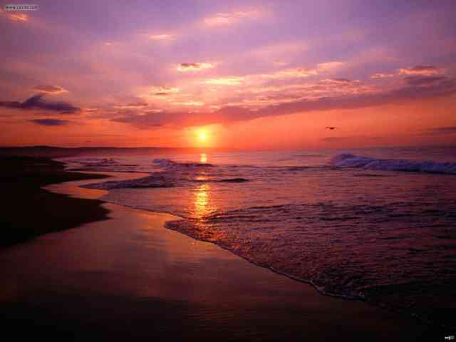 Pictures Laguna Beach Wallpapers