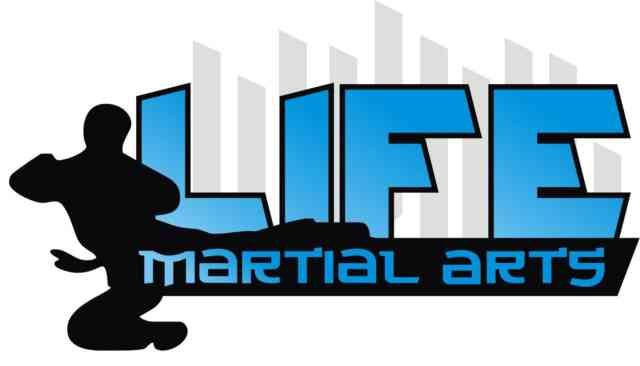 Martial Arts | Mixed martial arts | #14