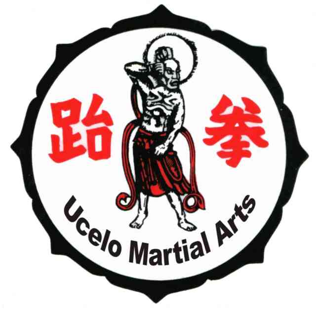 Martial Arts | Mixed martial arts | #3