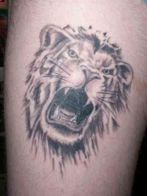 Lion Tattoo Designs | Tattoo Shop | #22
