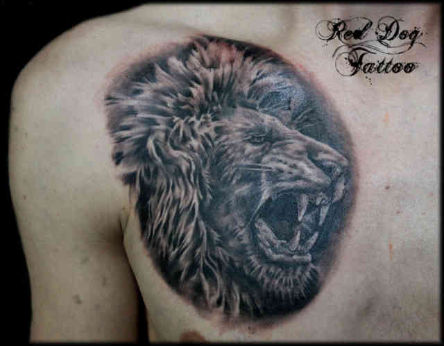 Lion tattoo designs tattoo shop 9 free hd wallpapers for Tattoo shops 24 hours