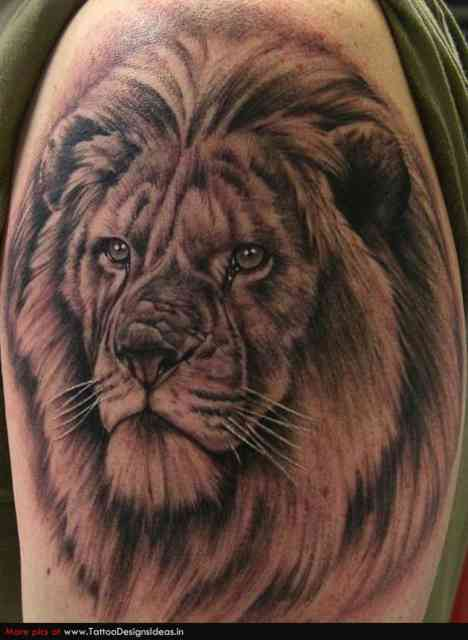 Lion Tattoo Designs | Tattoo Shop | #36