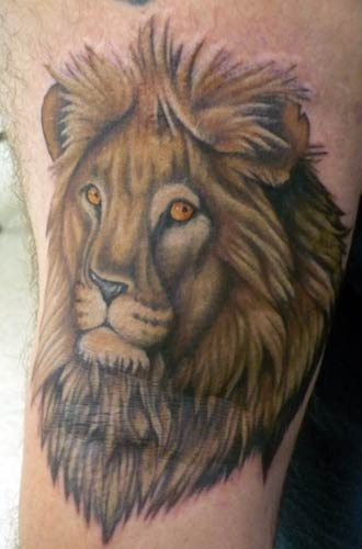 Lion Tattoo Designs | Tattoo Shop | #5