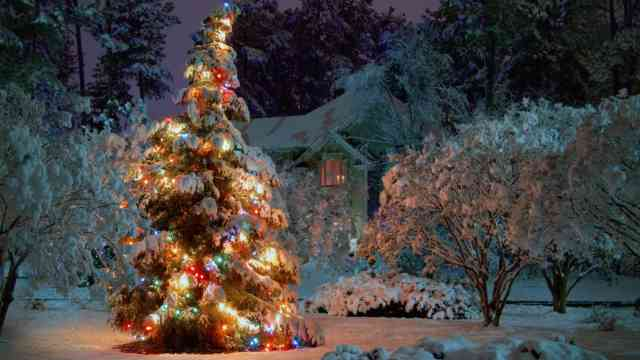 Christmas Tree Wallpaper | FREE Christmas Tree Wallpaper | Christmas Wallpapers | #29
