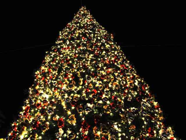 Christmas Tree Wallpaper | FREE Christmas Tree Wallpaper | Christmas Wallpapers | #3