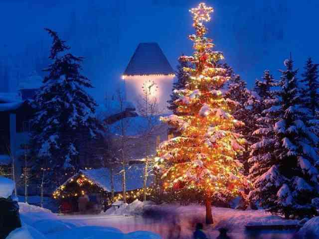 Christmas Tree Wallpaper | FREE Christmas Tree Wallpaper | Christmas Wallpapers | #31