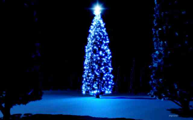 Christmas Tree Wallpaper | FREE Christmas Tree Wallpaper | Christmas Wallpapers | #38