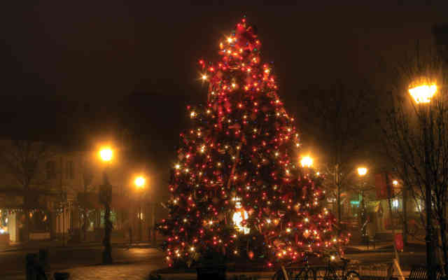 Christmas Tree Wallpaper | FREE Christmas Tree Wallpaper | Christmas Wallpapers | #39