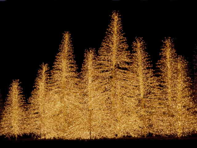 Christmas Tree Wallpaper | FREE Christmas Tree Wallpaper | Christmas Wallpapers | #40