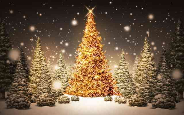 Christmas Tree Wallpaper | FREE Christmas Tree Wallpaper | Christmas Wallpapers | #6