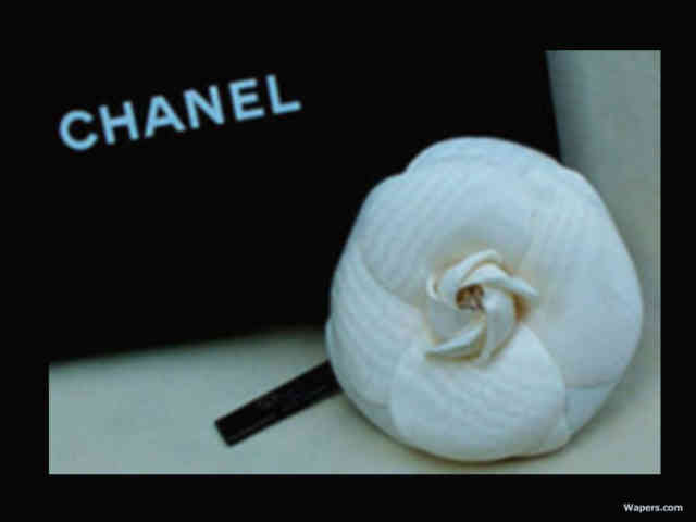 Chanel Wallpaper | High Definition Wallpapers | #13