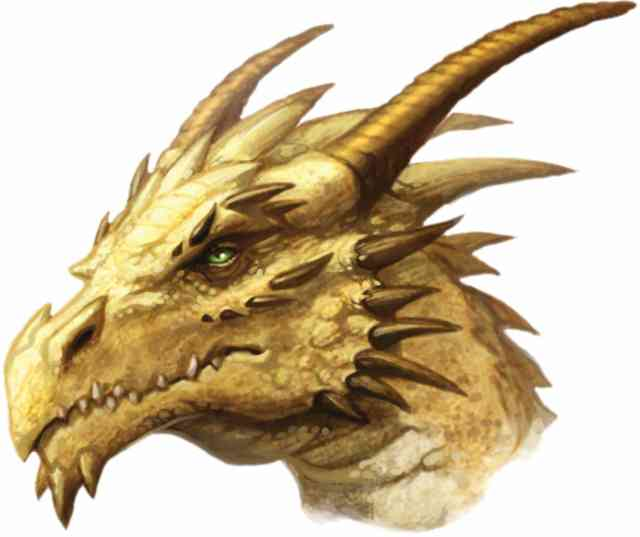 Images of Dragons | #23