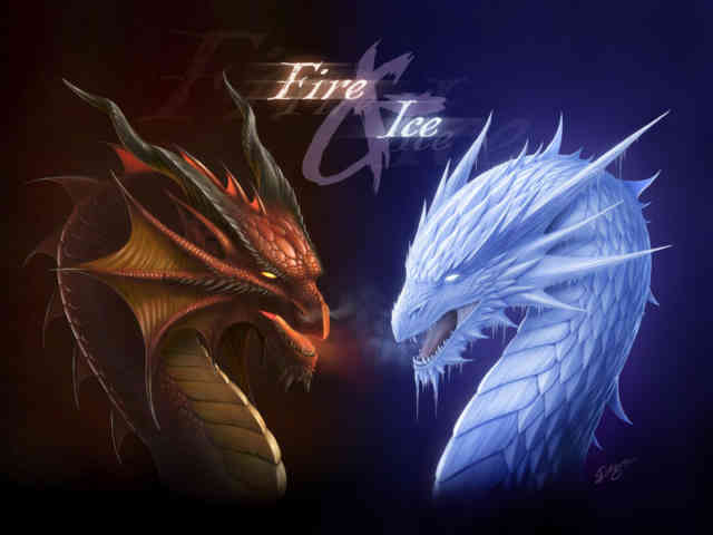 Images of Dragons | #29