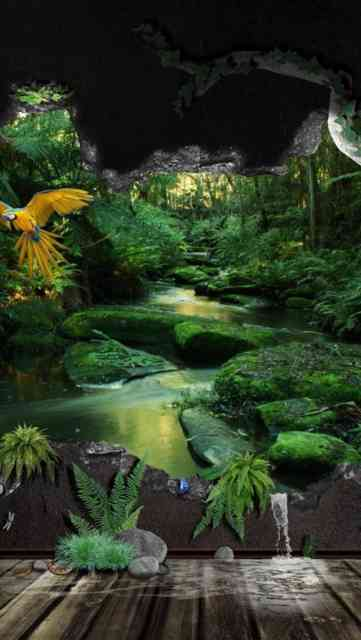 Iphone Backgrounds HD Jungle Africa