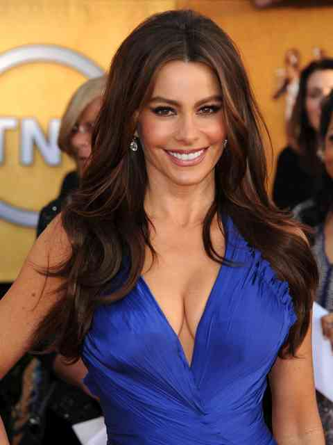 Celebrity Sofia Vergara Photos