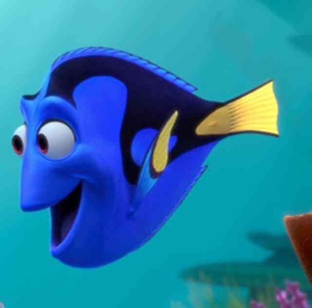 Dory friend Nemo Finding Dory Disney Movie Photos