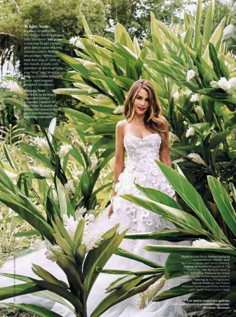 Sofia Vergara Wedding Magazine 2015 Photos