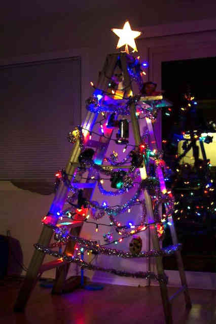 5 Crazy Christmas Tree Images