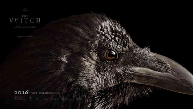 The Witch Movie 2015 wallpaper HD exclusive Crow film poster