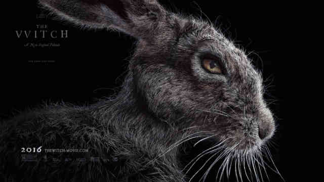 The Witch Movie 2015 wallpaper HD exclusive Rabbit film poster