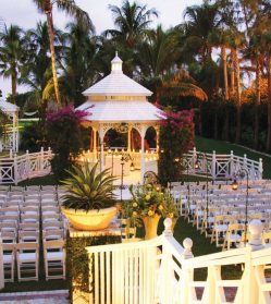 Get Hold of the Best Wedding Packages