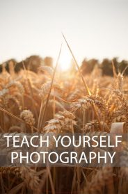 Things You Will Learn During Photography Training