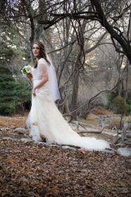 Wedding Videographer Utah - How do The Capture Excellent Images?