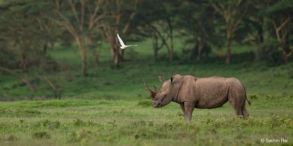 Wildlife Photography Tours Give Aspirants Opportunity to Excel