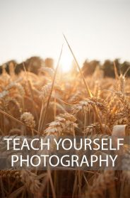 Why Choosing The Right Photography School Is Vital?